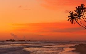 Обои закат, tropical, море, shore, sand, sunset, песок