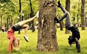 Обои парк, дерево, девуши