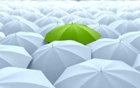 Обои зонты, зелёный, белый