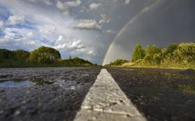 Обои дорога, природа, пасмурно, красиво, рудуга