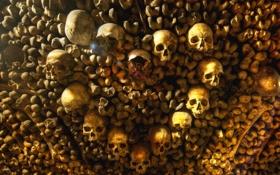 Обои могила, wallpaper, страшно, обои, Парижские катакомбы, Франция, ужас