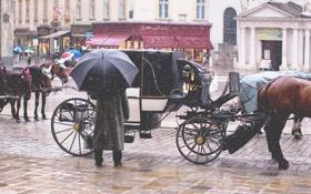 Обои снег, город, зонтик, люди, кони, водитель, такси