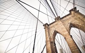 Обои небо, мост, вид, арка, трос, тросы