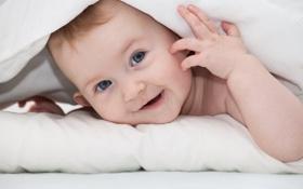 Картинка взгляд, улыбка, покрывало, прятки, ребёнок, голубоглазый