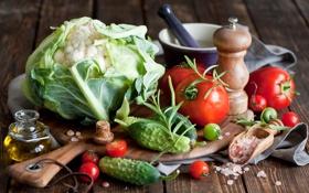 Обои масло, натюрморт, овощи, помидоры, капуста, огурцы