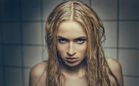 Обои взгляд, злость, ненависть, губки, Sofie Vanman