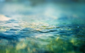 Картинка вода, макро, красота, размытость, macro