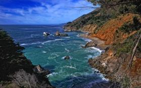 Обои США, Калифорния, скалы, деревья, небо, море