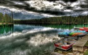Картинка леса, небо, облака, озеро, деревья, природа, Пейзажи