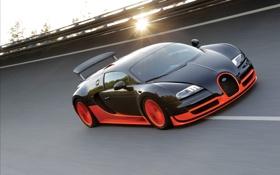 Обои Veyron, солнце, асфальт