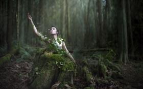 Обои woods, conceptual, selfportrait