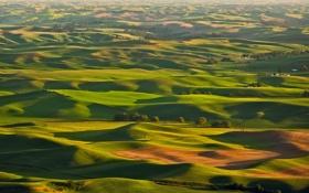 Обои Италия, Тоскана, деревья, поля, холмы