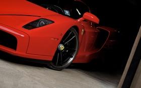 Обои красный, Ferrari, red, феррари, Enzo, передняя часть, энзо