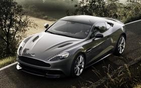 Обои дорога, поле, серый, фон, Aston Martin, суперкар, кусты