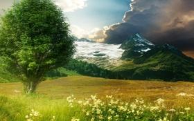 Картинка поле, лето, небо, трава, горы, природа, дерево