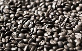 Картинка фон, кофе, зерна, текстура, coffee