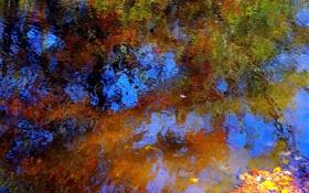Картинка отражение, вода, рябь