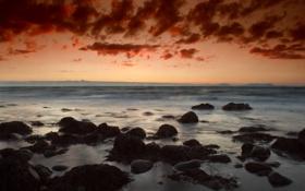 Обои море, небо, облака, водоросли, камни, Закат