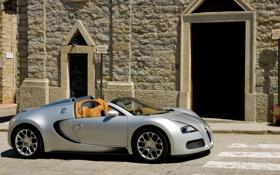 Обои город, здание, кирпич, Bugatti, veyron