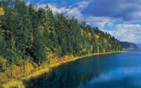 Картинка осень, лес, небо, облака, деревья, пейзаж, горы