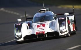 Обои Audi, ауди, спорт, суперкар, quattro, LMP1, R18
