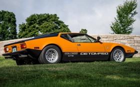 Обои Пантера, 1971, GTS, De Tomaso, Pantera, Де Томасо