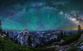 Обои лес, небо, звезды, пейзаж, горы, ночь, парк