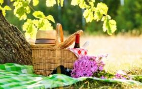 Обои трава, скатерть, пикник, лето, природа, букет, шляпа