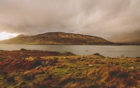 Картинка солнце, туман, озеро, холмы, дождливый