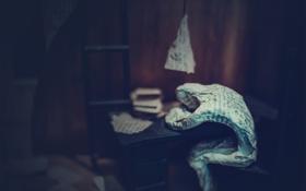 Картинка ретро, одиночество, стол, экспозиция, газета, СССР, Булгаков