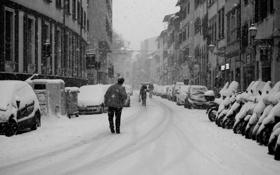 Обои снег, город, снегопад