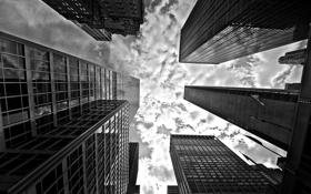 Картинка небо, облака, здания, небоскребы