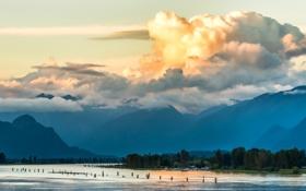 Обои лес, небо, облака, деревья, горы, тучи, озеро