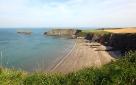 Картинка море, зелень, трава, цветы, скалы, берег, вид