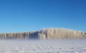 Картинка зима, поле, пейзаж, природа