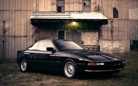 Обои черный, бмв, BMW, light, grass, black, 850