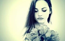 Картинка брюнетка, тюльпаны, Olga Getto