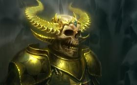 Обои золото, череп, зубы, арт, скелет, рога, броня