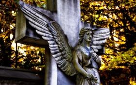 Обои крылья, крест, ангел