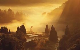 Картинка свет, горы, поля, урожай, harvesttime
