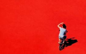 Обои девушка, велосипед, цвет