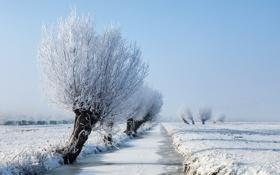 Обои зима, поле, река