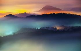 Картинка облака, пейзаж, рассвет, туман, лес, горы