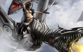 Обои девушка, драконы, воин, the chase