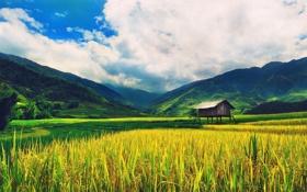 Обои горы, поле, дом, небо, долина