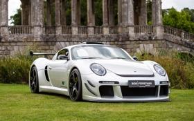 Картинка RUF, CTR 3, Grass, Porsche, Front, White