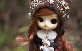 Обои шапка, игрушка, кукла, брюнетка, пальто