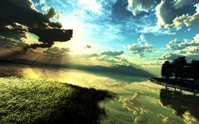 Картинка небо, трава, вода, солнце, облака, деревья, закат
