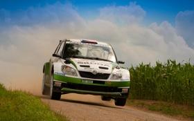 Обои Гонка, Автомобиль, Fabia, Фабия, Спорт, Skoda, Rally