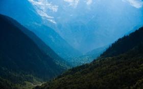 Картинка лес, небо, облака, деревья, пейзаж, горы, природа